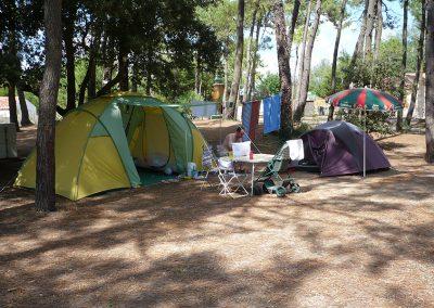 photo10-emplacements-camping-la-gachere-camping-olonne-sur-mer
