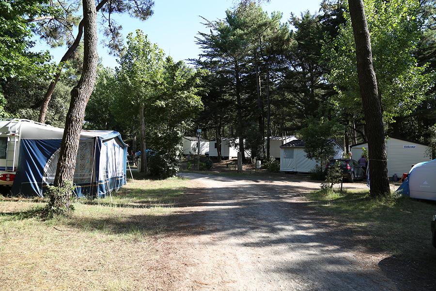 Emplacements camping tente olonne sur mer camping la gach re for Piscine des chirons olonne sur mer