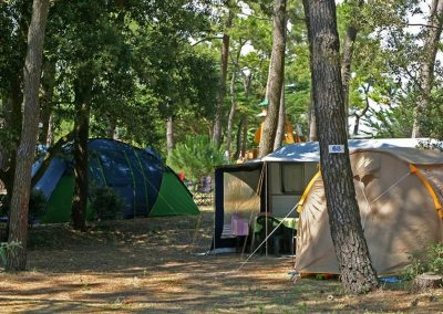 photo6-emplacements-camping-la-gachere-camping-olonne-sur-mer