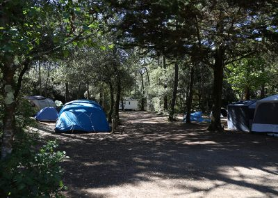 photo8-emplacements-camping-la-gachere-camping-olonne-sur-mer